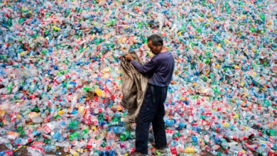Photo of We know plastic bottles are choking our planet. So why are companies still selling them?