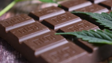 Photo of Cannabis edibles become legal today