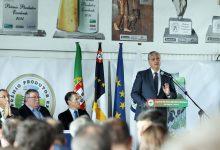 Photo of Governo Regional vai tentar minimizar efeitos na Região da aplicação de taxas adicionais a produtos da UE