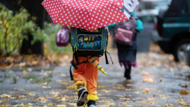 Photo of Here's when will it rain the hardest in Toronto on Halloween