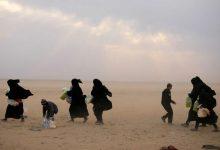 Photo of Já foram repatriadas 350 crianças de famílias do Estado Islâmico