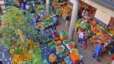 Photo of Queda aparatosa no Mercado dos Lavradores