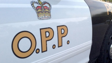Photo of 'Busy night' for OPP after multiple people charged with impaired driving