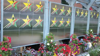 Photo of Camões Square Portuguese Pioneers Parkett win Toronto Garden Award
