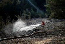 Photo of Portugal responde por um quarto da área ardida na Europa