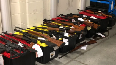 Photo of 250 guns, 200K rounds of ammo and a grenade seized from Kitchener home