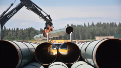 Photo of Trans Mountain received $320M in government subsidies in 2019, report finds