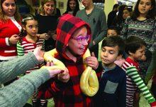 Photo of Casa das Beiras celebra Natal com animais exóticos