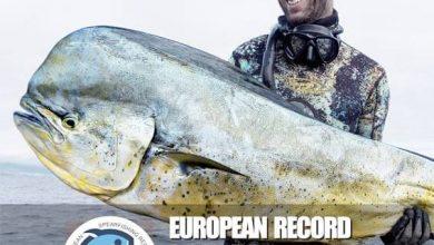 Photo of Paulo Afonso bate recorde europeu com um dourado de 23,4 quilos