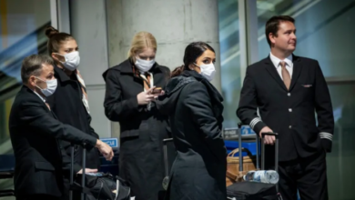 Photo of Ontario reports 379 new COVID-19 cases as province waits on shipment of N95 masks