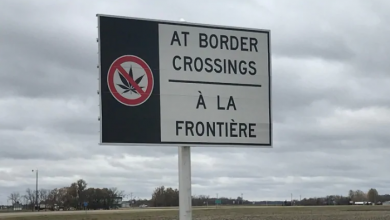 Photo of Pot seizures jumped at U.S. border in the year after Canada legalized cannabis