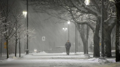 Photo of Heavy snow and wind cancel classes, disrupt travel in Maritimes