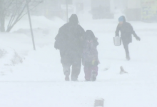 Photo of Up to 70 cm of snow expected as blizzard heads to Newfoundland