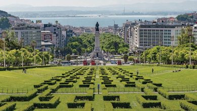 Photo of Terra Viva – Lisboa-Capital Verde Europeia 2020