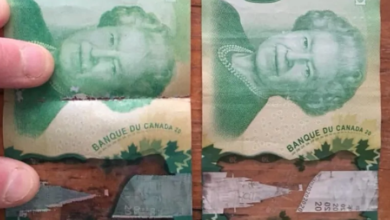 Photo of Fake money circulating in Westboro, deli owner warns