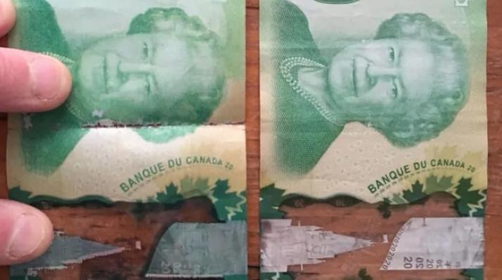 Photo of Fake money circulating in Westboro, deli owner warns