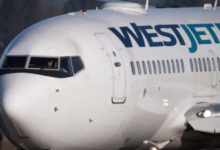 Photo of WestJet's new policy on dogs appears to have been based on inaccurate document