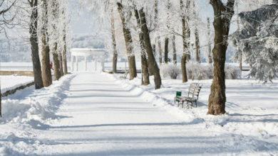 Photo of O inverno e a transformação