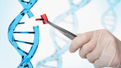 Photo of CRISPR