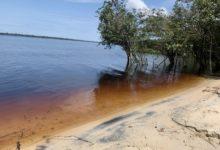 Photo of Amazónia: Os poderosos rios e a floresta