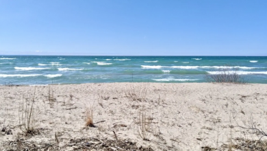 Photo of Wasaga Beach mayor worried about big crowds on Victoria Day weekend despite COVID-19