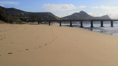 Photo of Madeira com 23 praias de Ouro
