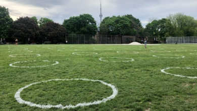 Photo of Physical distancing circles painted on grass at Trinity Bellwoods Park