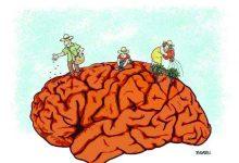Photo of Cultivar a mente