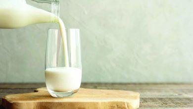Photo of Será este leite o melhor amigo dos desportistas?