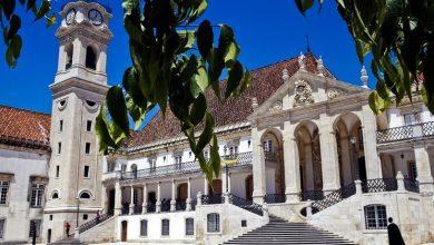 Photo of Associação Internacional dos Lusodescendentes quer lusodescendentes a estudar em Portugal