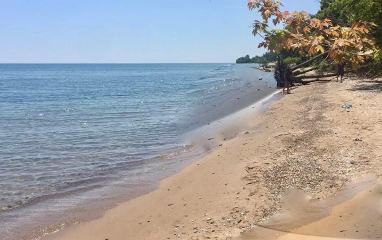 Pelee Island, praia e bom vinho-praia2-temacapa-mileniostadium