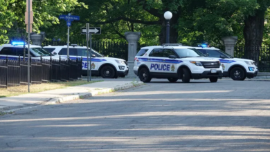 Photo of Armed man arrested after gaining access to Rideau Hall grounds, police say