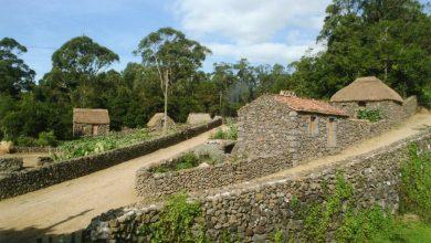 Photo of Quinta do Martelo volta a ganhar mais uma Green Key