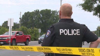 Statistics Canada to start collecting race-based crime data-Milenio Stadium-Canada