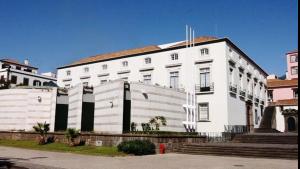 Parlamento da Madeira quer incluir emigrantes no regime de seguro social voluntário-Milenio Stadium-Madeira
