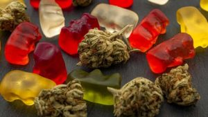 Spike in children visiting ER after consuming edibles, says CHEO-Milenio Stadium-Canada