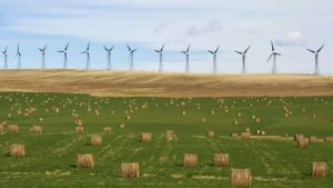 Alberta could lead Canada in wind and solar power by 2025, expert says-Milenio Stadium-Canada