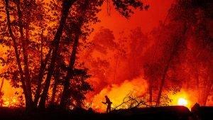 Chamas na Califórnia consomem área sem precedentes desde 1987-mileniostadium-california