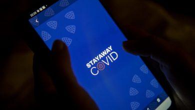 SNS24 já recebeu 20 contactos de pessoas alertadas pela StayAway Covid