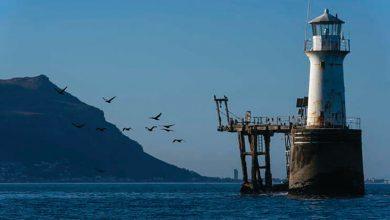 Photo of Subida do mar pode afetar 278 áreas protegidas de África nos próximos 80 anos