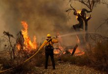 Photo of California wildfire threatens over 1,000 homes