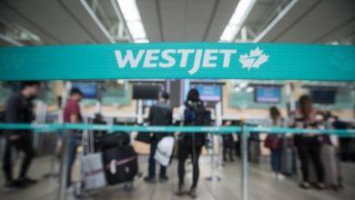 WestJet shuts down most of its operations in Atlantic Canada-Milenio Stadium-Canada