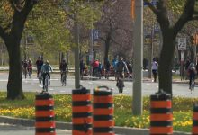 Toronto estendeu programa ActiveTO até outubro - milenio stadium