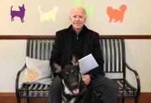 Major, companheiro de Biden, é o primeiro cão de um abrigo a viver na Casa Branca