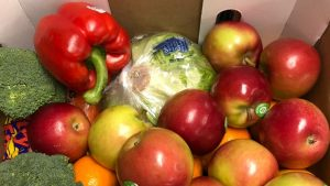 Ontario food bank usage on the rise, even before pandemic pressure-report-Milenio Stadium-Ontario