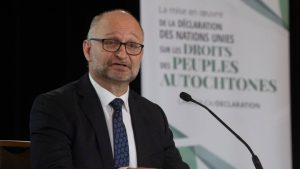 Liberals introduce bill to implement UN Indigenous rights declaration-Milenio Stadium-Canada