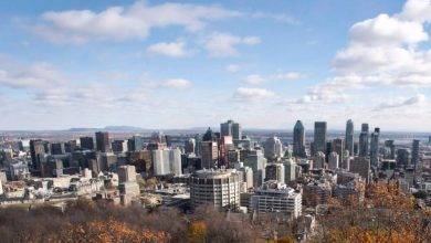 Montreal pledges to plant 500,000 trees, boost public transit ridership as part of climate plan-Milenio Stadium-Canada