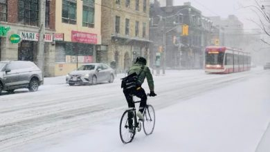 All-day winter storm to dump up to 15cm of snow on Toronto, surrounding areas-Milenio Stadium-Ontario