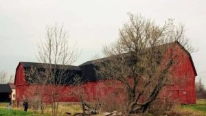 5th-generation farm owner in Ontario fights city plan to take her property for industrial park-Milenio Stadium-Ontario