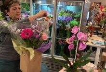 Order early for Valentine's Day, florists warn as demand blooms, supply wilts amid pandemic-Milenio Stadium-Ontario